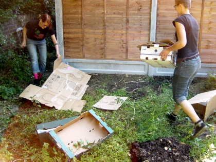 Mulching - The First Cardboard Layer