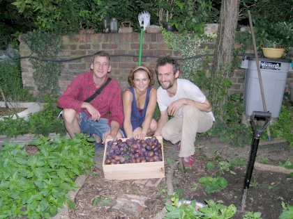The plum picking team